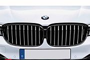 Grilles, Side Vents & Headlamp Brows