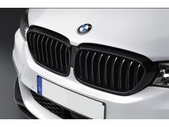 BMW Performance Front Grilles